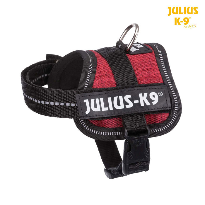 Arnés Julius-K9® Power, Baby 1/XS: 30–40 cm/18 mm, Antracita