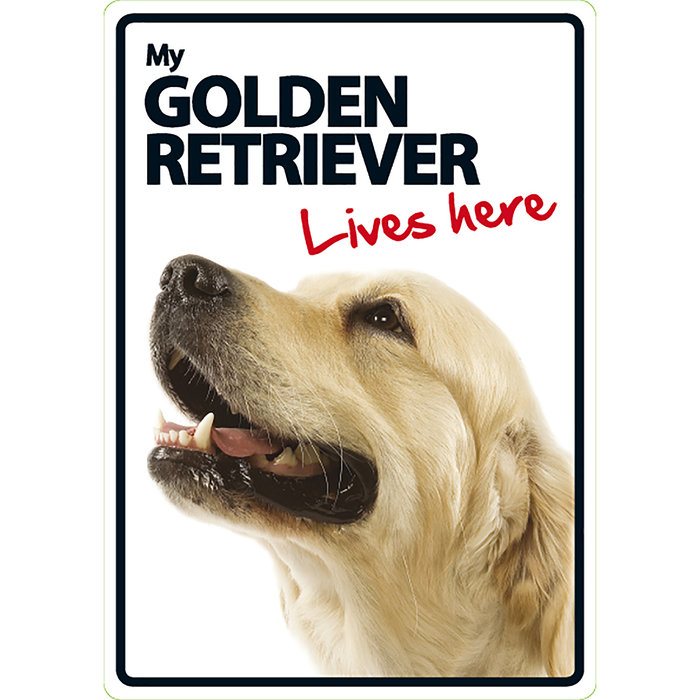 Señal A5 'Golden Retriever - Lives Here', 14.8 x 21 cm, MAGNET & STEEL